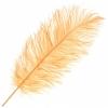 "Ostrich Drab Feathers 11-13"" Premium Quality Copper"
